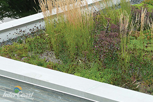 Curv-Rite® Landscape Edging & Brick Paver Edging for Green Roofs